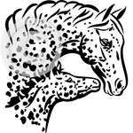Appaloosa Mare and Foal Heads 2 - horse head clip art set