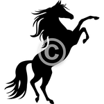 Touch the Stars - Arabian horse clip art set