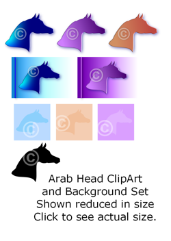 Arab Head - Arabian horse head clip art set
