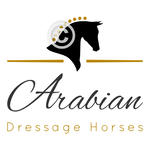 Horse Head Logo - Dressage Arabian